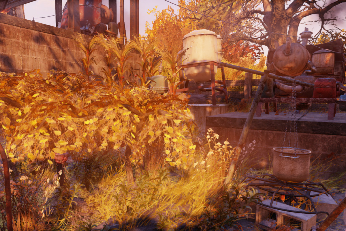 Corn Fallout 4  Fallout 76 Guide How to make an Adhesive farm Polygon