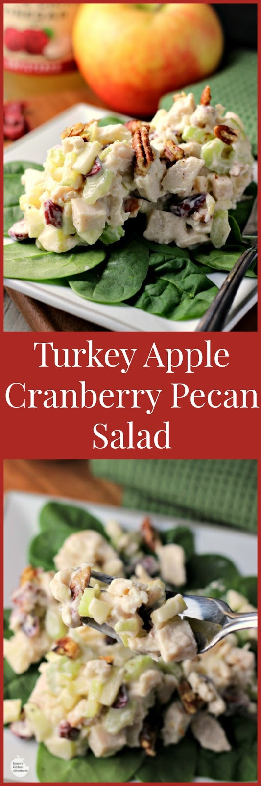 Cranberry Salad Recipes For Thanksgiving  Turkey Apple Cranberry Pecan Salad