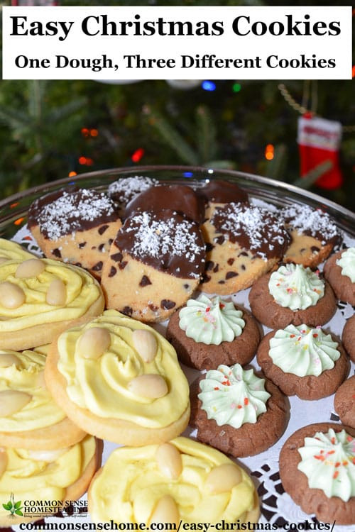 Different Christmas Cookies  Easy Christmas Cookies e Dough Three Different Cookies