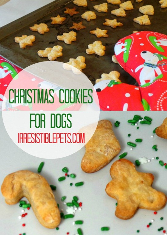 Dog Christmas Cookies  Christmas Cookie Recipe for Dogs Irresistible Pets