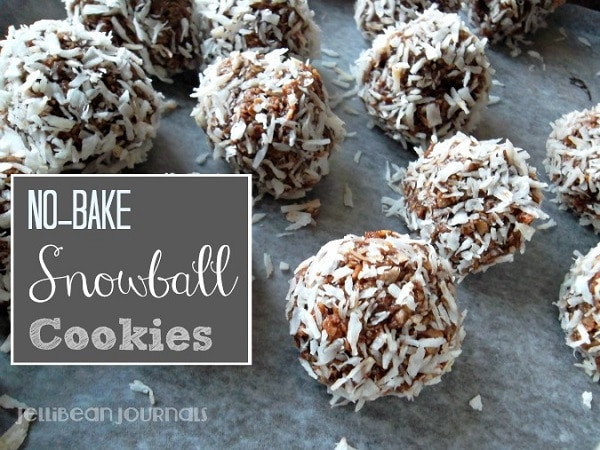Easy No Bake Christmas Cookies  Spread Holiday Cheer 7 No Bake Christmas Cookies