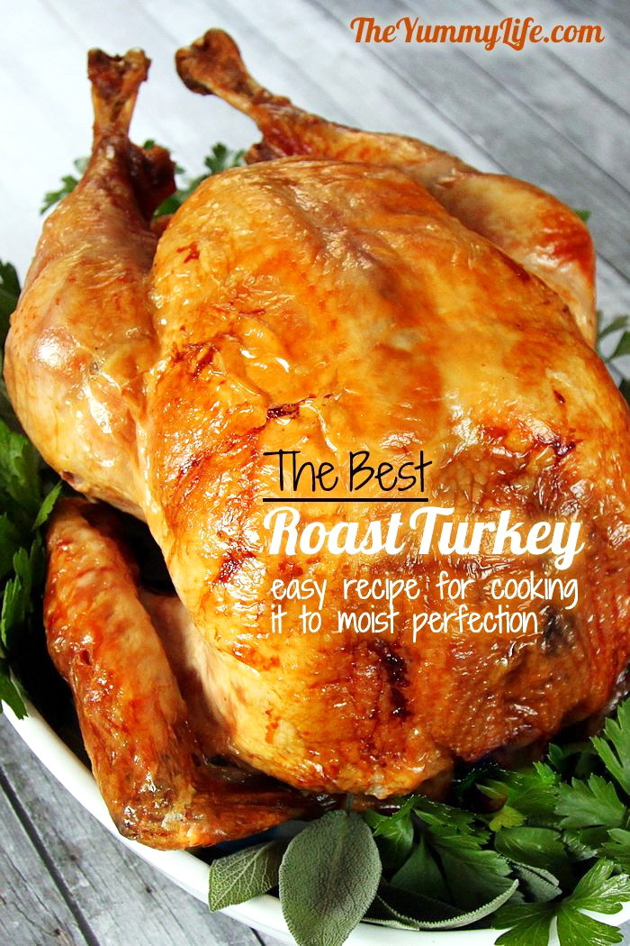 Easy Thanksgiving Turkey Recipes  Top 10 Simple Turkey Recipes – Best Easy Thanksgiving