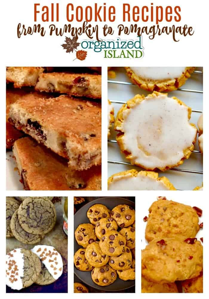 Fall Cookies Recipe  Fall Cookie Recipes to Make and Enjoy