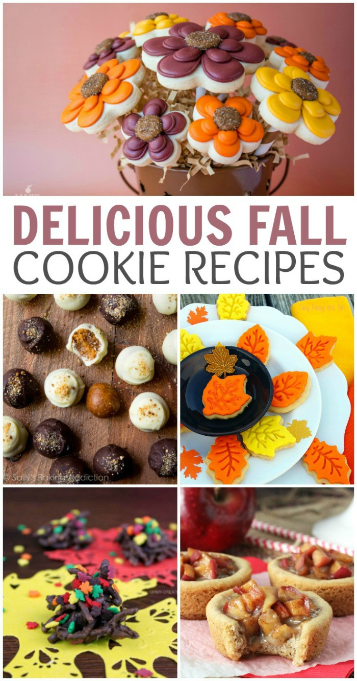 Fall Cookies Recipe  25 Delicious Fall Cookie Recipes Finding Debra