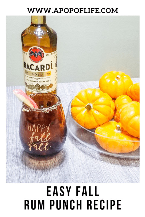 Fall Rum Drinks  Easy Fall Rum Punch Recipe To Start The Season f Right
