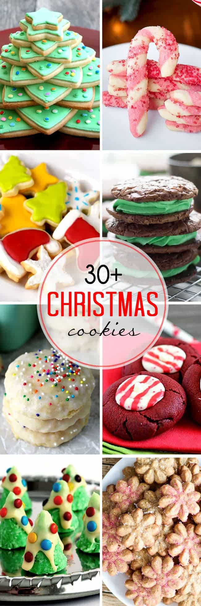 Festive Christmas Cookies  Thirty Plus Festive Christmas Cookie Recipes