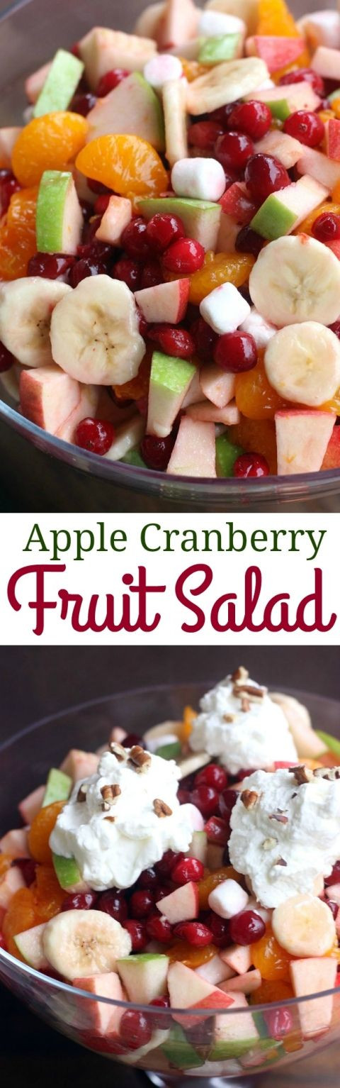 Fruit Salads For Thanksgiving Dinner  Apple Cranberry Fruit Salad Recipe