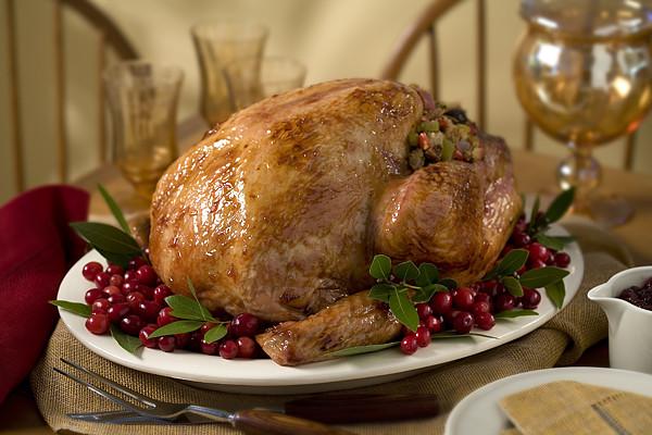 Gracias The Thanksgiving Turkey  HAPPY THANKSGIVING DAY My Favorite Memory as a Talk Line