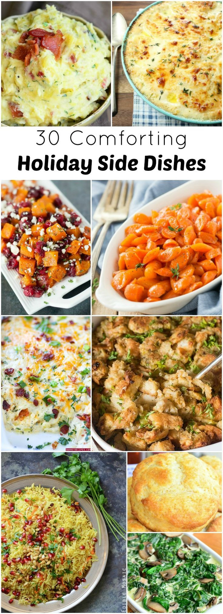 Ideas For Thanksgiving Dinner Side Dishes  17 Best ideas about Holiday Side Dishes on Pinterest