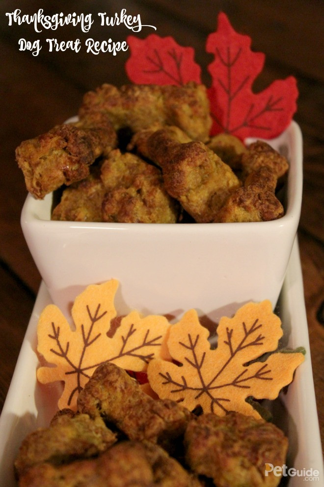 Ingredients For Thanksgiving Turkey  Thanksgiving Turkey Dog Treat Recipe