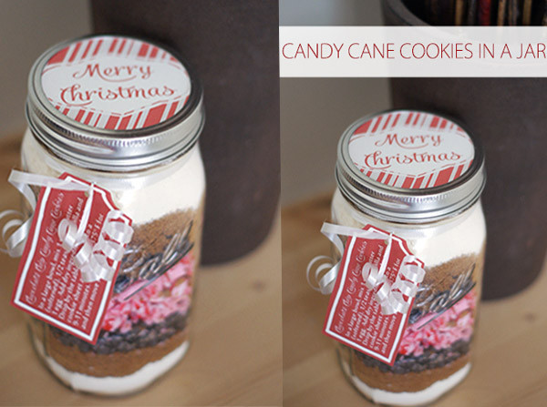 Mason Jar Christmas Cookies  10 Christmas Cookies & Mixes in Mason Jars