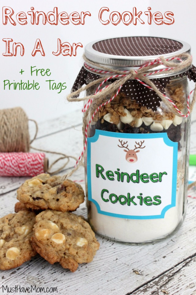 Mason Jar Christmas Cookies  32 Best Mason Jar Cookie Recipes Ever Created