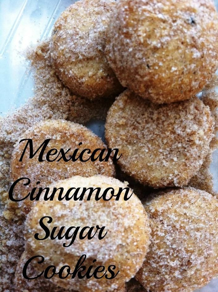 Mexico Christmas Cookies  Mexican Cinnamon Sugar Cookies or Polvorones de Canela are