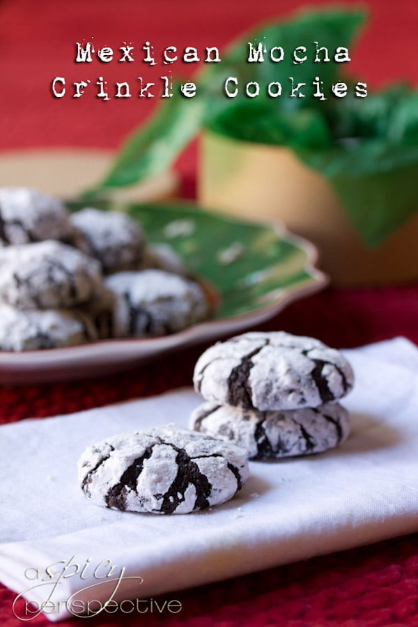Mexico Christmas Cookies  Mexican Mocha Crinkle Cookies A Spicy Perspective