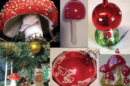 "Mushrooms And Christmas  Santa and the Shrooms The Real Story Behind the ""Design"