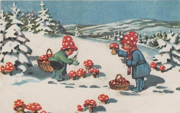 Mushrooms And Christmas  Is the Santa Claus Myth Based on Magic Mushrooms Sam Woolfe