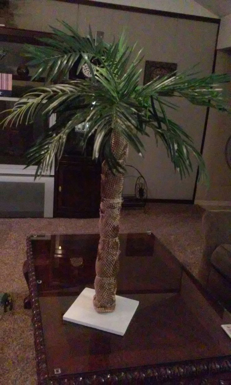 Noodles And Company Sioux Falls Sd  Homemade palm tree made with pvc pool noodle over the top