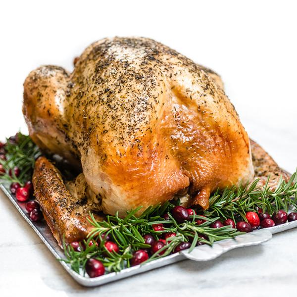 Oven Turkey Recipes Thanksgiving  Quick Roast Turkey HamiltonBeach