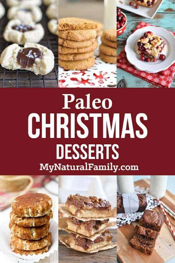 Paleo Christmas Desserts  Paleo Christmas Dessert Recipes