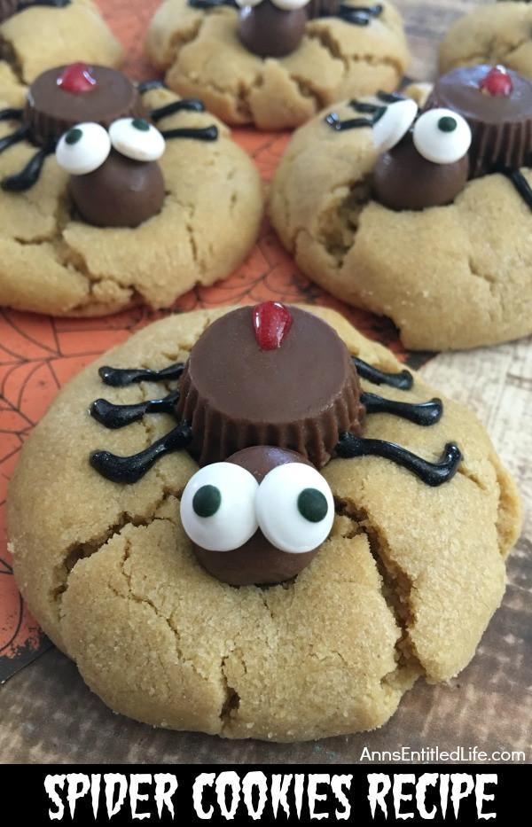 Recipes For Halloween Cookies  Spider Cookies Recipe