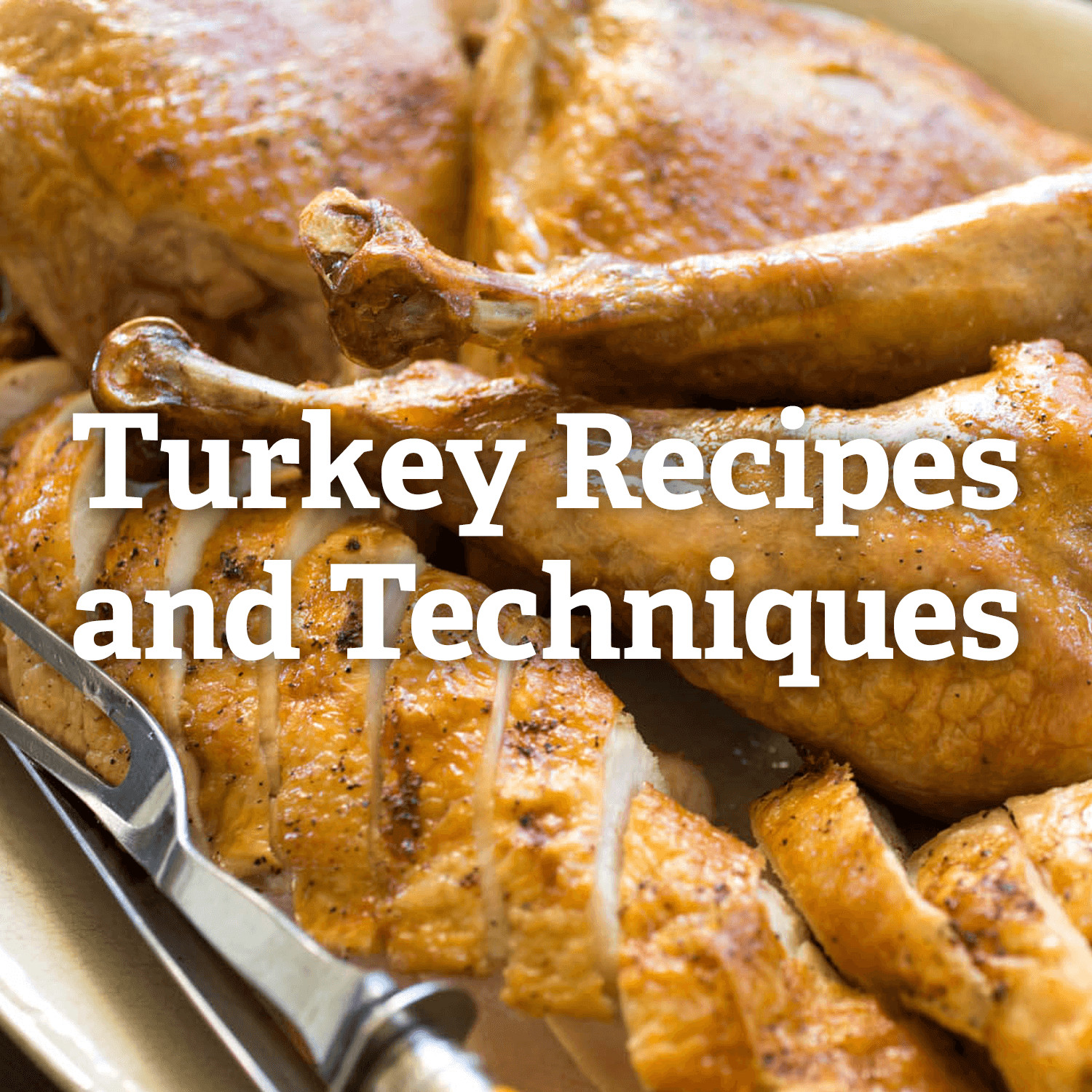 Recipes For Thanksgiving Turkey  Thanksgiving Turkey Recipes and Techniques