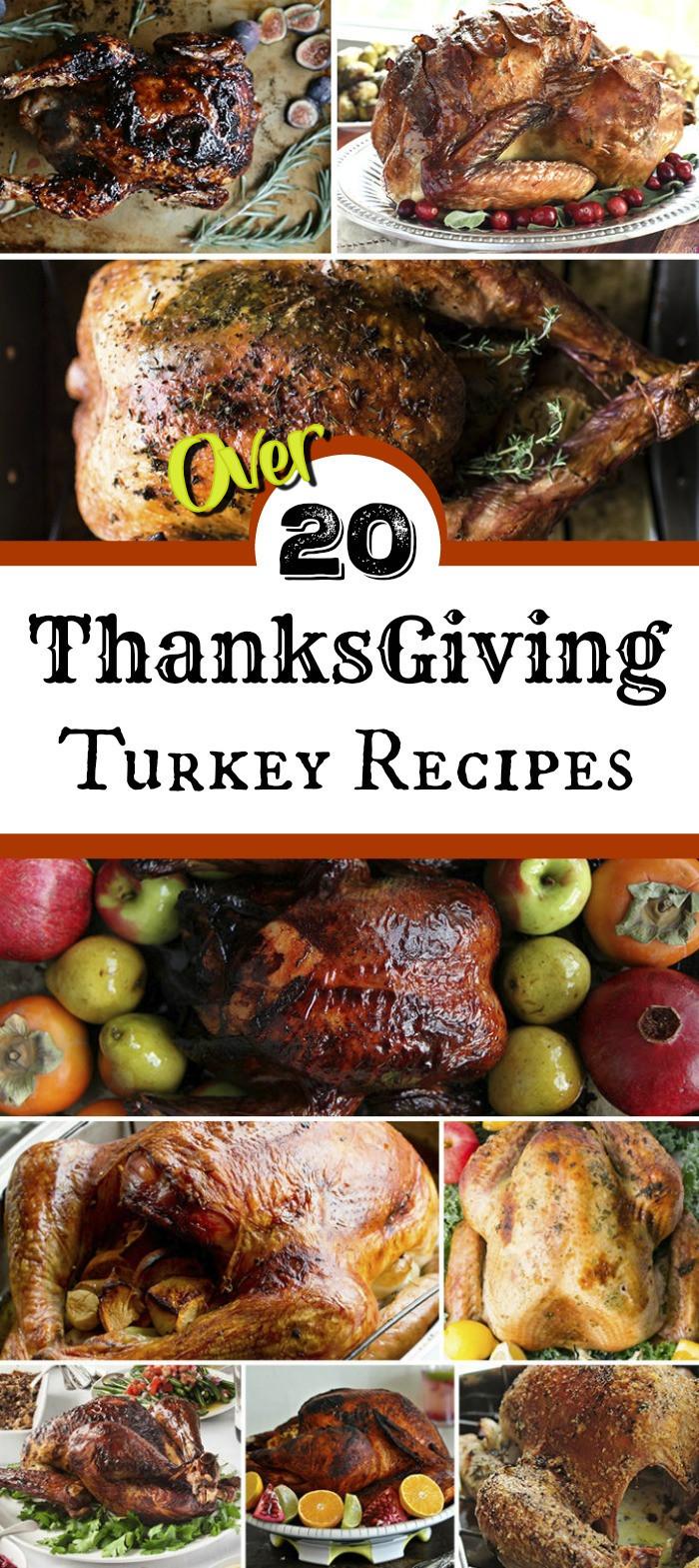 Recipes For Thanksgiving Turkey  Thanksgiving Turkey Recipes for the Best Thanksgiving
