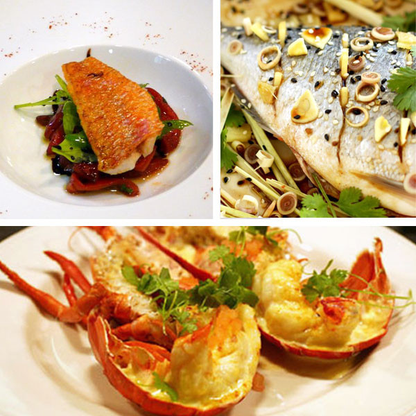 Seafood Christmas Dinners  Seafood Christmas Dinner Ideas – Festival Collections