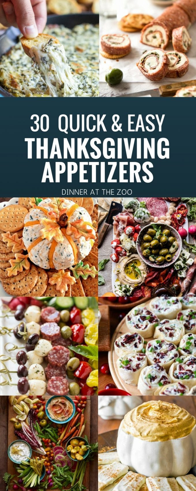 Simple Thanksgiving Appetizers  30 Thanksgiving Appetizer Recipes Dinner at the Zoo