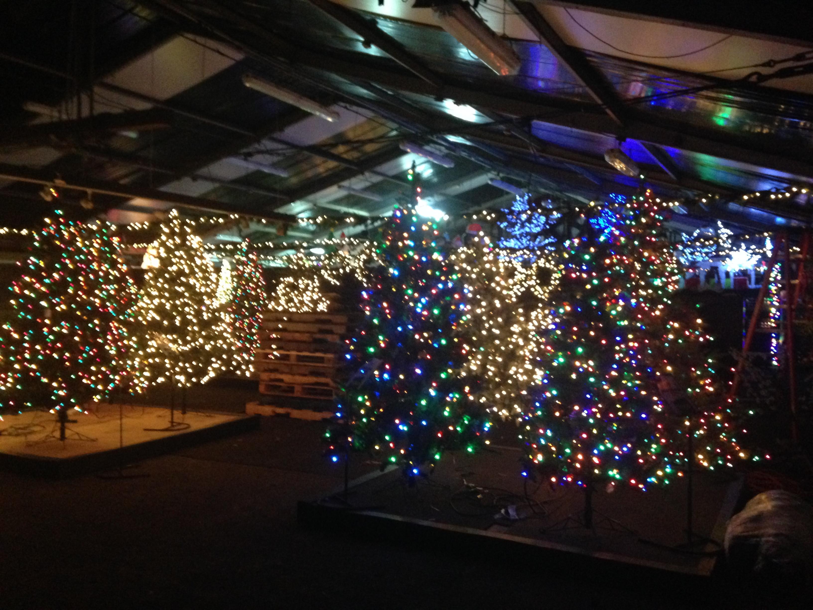 Stew Leonard'S Christmas Trees  Return to New York Walk Down Memory Lane little fat