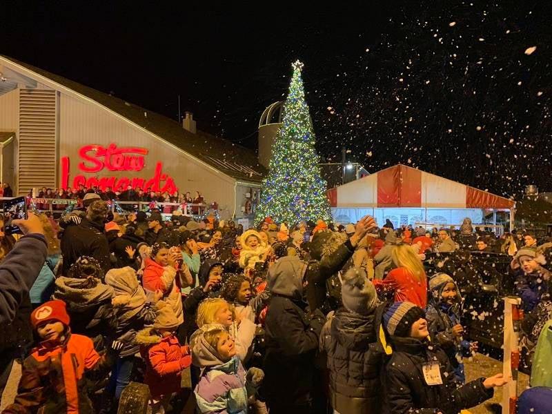 Stew Leonard'S Christmas Trees  Stew Leonard s Hosts 2018 Christmas Tree Lighting In