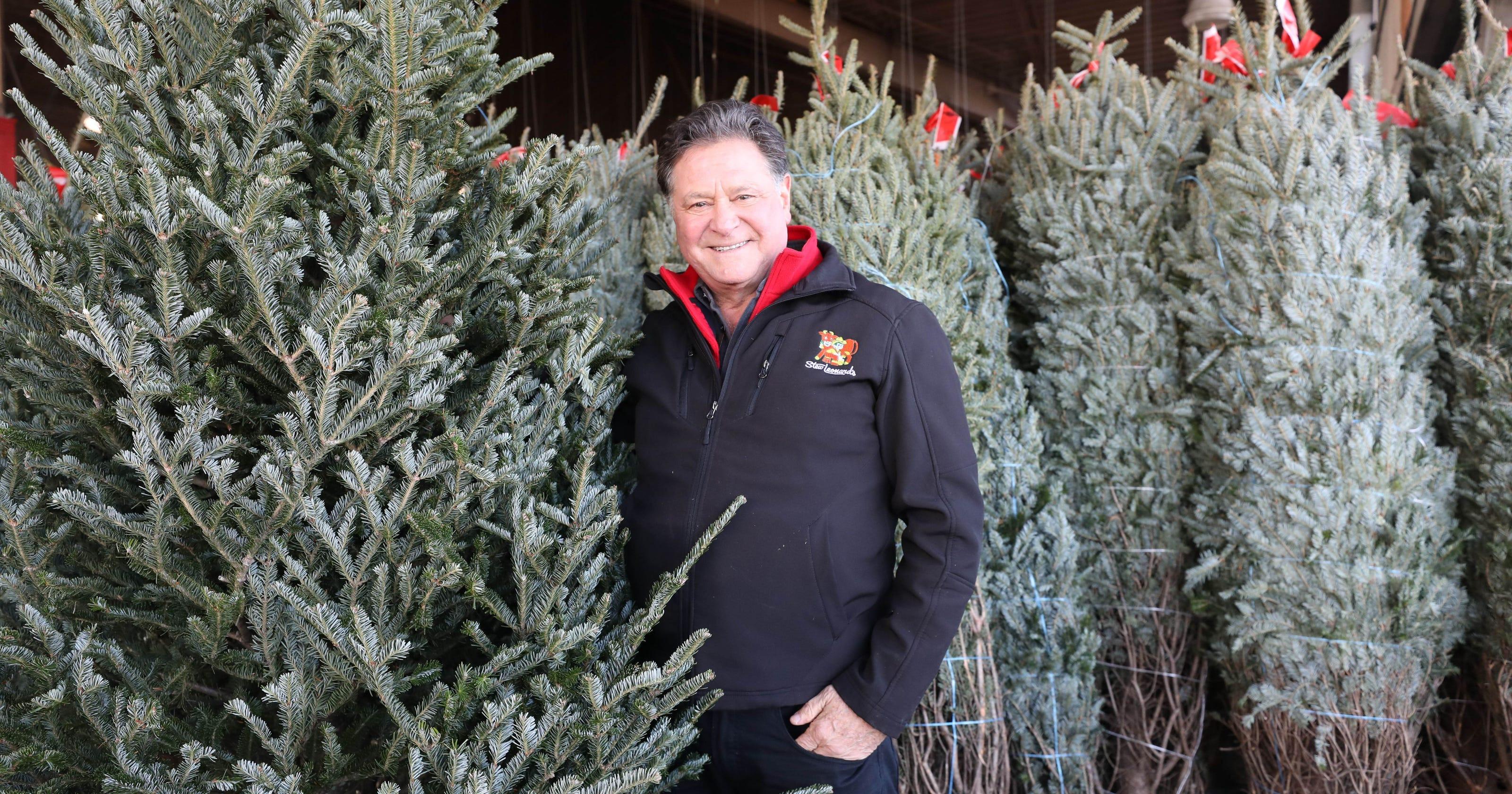 Stew Leonard'S Christmas Trees  Christmas tree 101 with Stew Leonard Jr