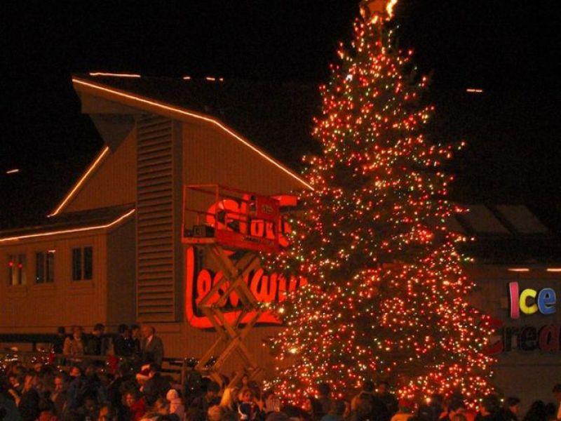 Stew Leonard'S Christmas Trees  Stew Leonard s Hosted Rescheduled Norwalk Christmas Tree