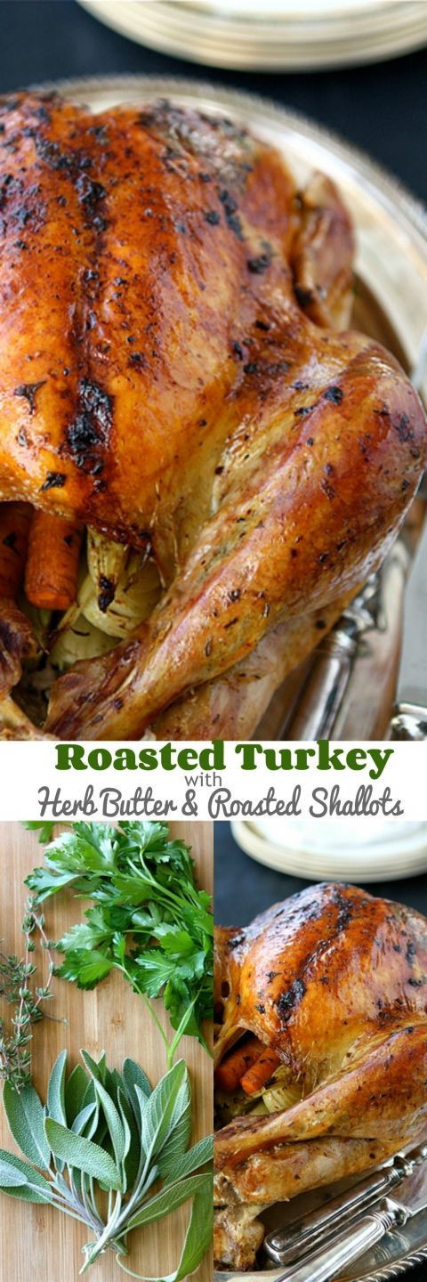 Thanksgiving Duck Recipes  25 best ideas about Roasted Turkey on Pinterest