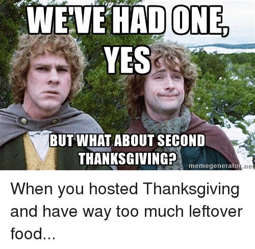 Thanksgiving Leftovers Meme  25 Best Memes About Meme Generatoer