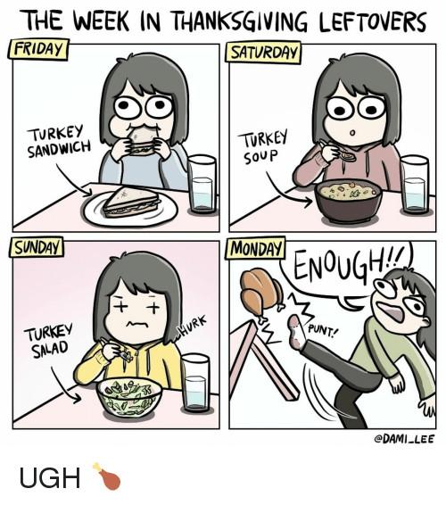 Thanksgiving Leftovers Meme  25 Best Memes About Turkey Sandwich