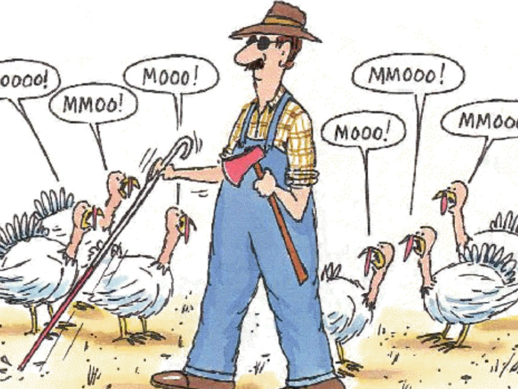 Thanksgiving Turkey Images Funny  Happy Thanksgiving