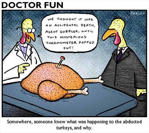 Thanksgiving Turkey Images Funny  Funny Thanksgiving pilation 20 Pics