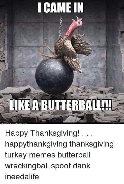 Thanksgiving Turkey Memes  25 Best Memes About Turkey Meme