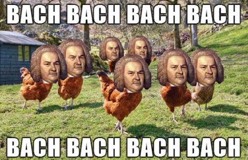 Thanksgiving Turkey Memes  Bach Bach Funny Thanksgiving Meme