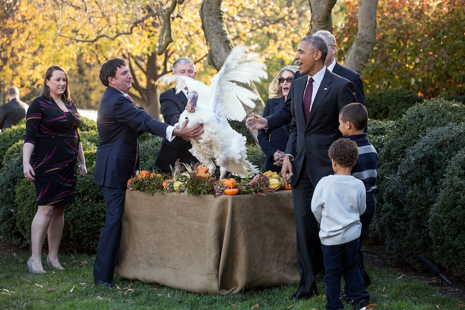 Thanksgiving Turkey Pardon  President Obama s Final Turkey Pardon