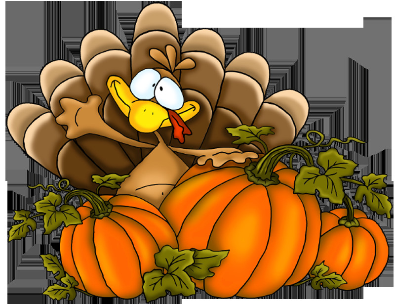 Thanksgiving Turkey Pictures Free  Thanksgiving Turkey PNG Clipart