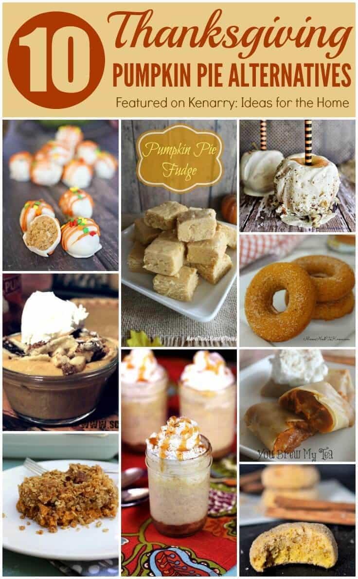 Turkey Alternatives For Thanksgiving  Pumpkin Pie Alternatives 10 Ideas for Thanksgiving