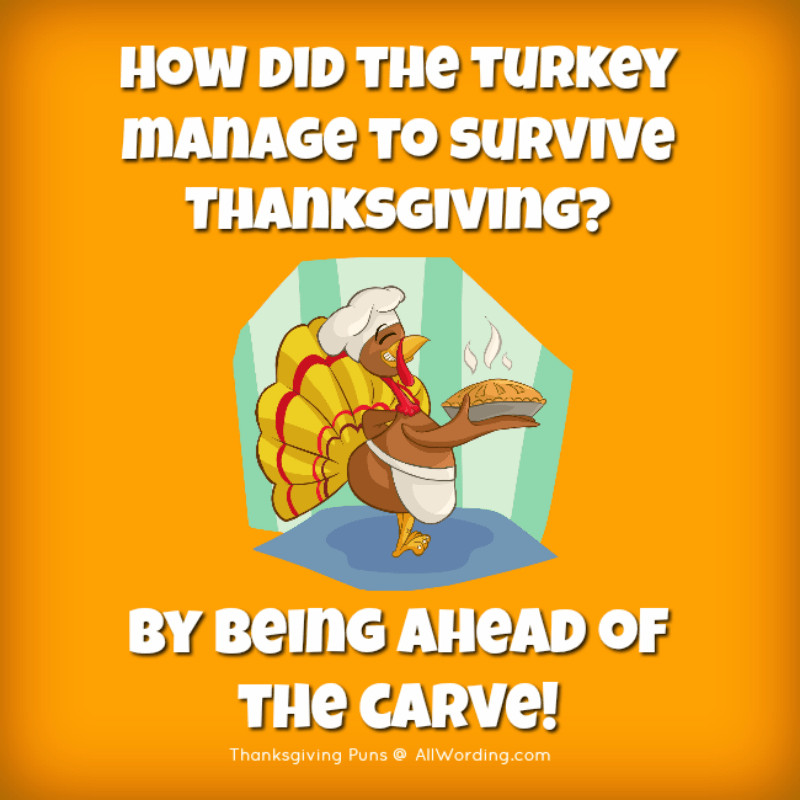 Turkey Puns Thanksgiving  These Thanksgiving Puns are Plucking Hilarious