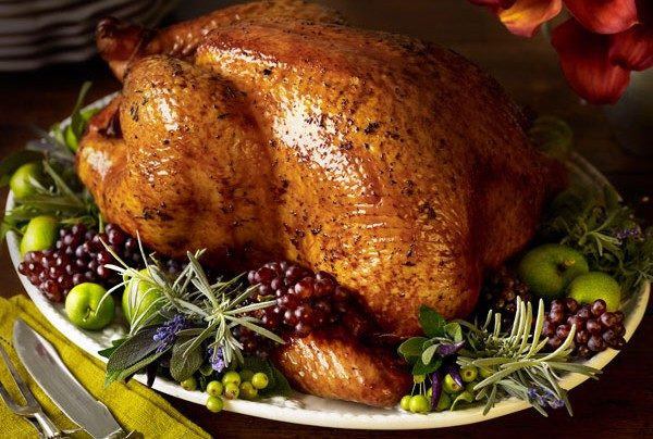 Why Do We Eat Turkey On Thanksgiving  The Real Reason We Eat Turkey on Thanksgiving